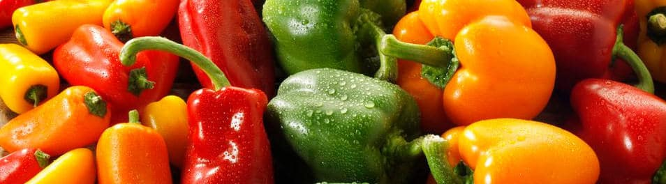 Sweet Peppers – PrimePro Case Study