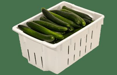 Vegetable Lug