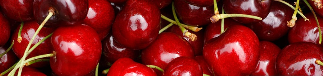 Cherries – PrimePro Case Study