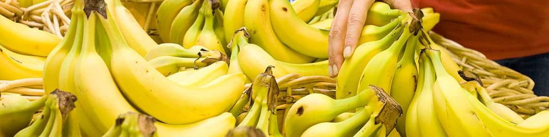 Bananas – PrimePro Case Study